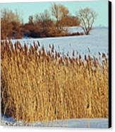 Winter Breeze Canvas Print by Aimee L Maher Photography and Art Visit ALMGallerydotcom