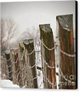 Winter Fence Canvas Print by Sandra Cunningham