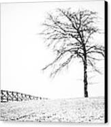 Winter In Black And White Canvas Print by David Waldrop