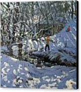 Winter Stream Canvas Print by Andrew Macara