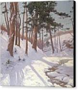Winter Woodland With A Stream Canvas Print by James MacLaren