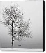Wintertrees Canvas Print by Joana Kruse