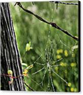 Wired Canvas Print by JC Findley
