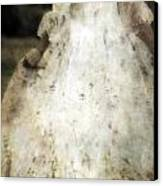 Woman In A Meadow Canvas Print by Joana Kruse