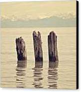 Wooden Piles Canvas Print by Joana Kruse