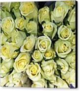 Yellow Roses Canvas Print by Anna Villarreal Garbis