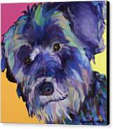 Beau Canvas Print by Pat Saunders-White
