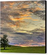 Lonley Tree Canvas Print by Matt Champlin