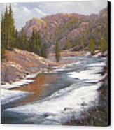 060112-2016    January Freeze   Canvas Print by Kenneth Shanika