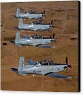 A Formation Of Iraqi Air Force T-6 Canvas Print by Stocktrek Images