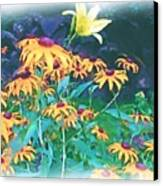 A Lily In The Field Canvas Print by Patricia Griffin Brett