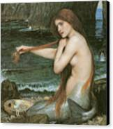 A Mermaid Canvas Print by John William Waterhouse