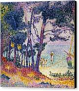 A Pine Grove Canvas Print by Henri-Edmond Cross