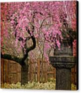 Asian Spring Canvas Print by Chris Lord