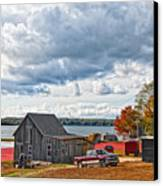 Cranberry Farming Canvas Print by Gina Cormier