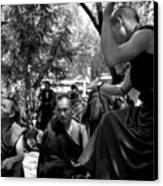 Debate With Lama Canvas Print by Lian Wang