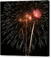 Fireworks Canvas Print by Marti Buckely