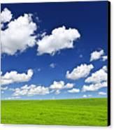 Green Rolling Hills Under Blue Sky Canvas Print by Elena Elisseeva