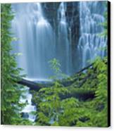 Lower Proxy Falls Canvas Print by Greg Vaughn - Printscapes