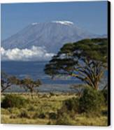 Mount Kilimanjaro Canvas Print by Michele Burgess