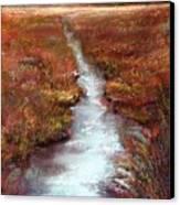 October Goshen Creek Canvas Print by Peter R Davidson