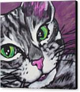 Purple Tabby Canvas Print by Sarah Crumpler