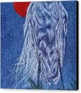 Snow Bird Canvas Print by Shahid Muqaddim