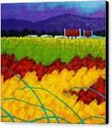 Spring Meadow Canvas Print by John  Nolan