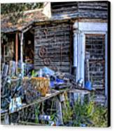 The Old Shed Canvas Print by David Patterson
