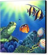 Turtle Dreams Canvas Print by Angie Hamlin