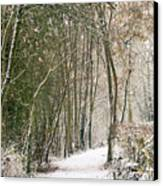 Winter Journey Canvas Print by Andy Smy
