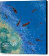 13 Pesciolini Rossi Canvas Print by Guido Borelli
