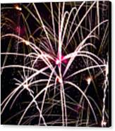 2011 Fireworks Canvas Print by Robert  Torkomian