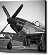 P 51 Mustang Canvas Print by Eric Miller