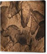 Stone-age Cave Paintings, Chauvet, France Canvas Print by Javier Truebamsf
