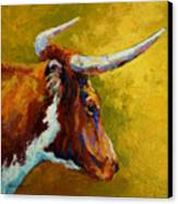 A Couple Of Pointers - Longhorn Steer Canvas Print by Marion Rose