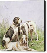 A Group Of French Hounds Canvas Print by Charles Oliver de Penne