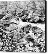 A Hiker's View - Landscape Print Canvas Print by Kelli Swan