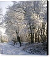 A Sparkling Winter Day Canvas Print by Sophie De Roumanie
