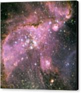 A Star-forming Region In The Small Canvas Print by Stocktrek Images