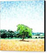 A Tree Near Siena Canvas Print by Jason Charles Allen