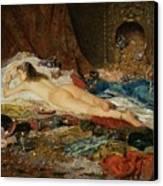 A Wealth Of Treasure Canvas Print by Della Rocca