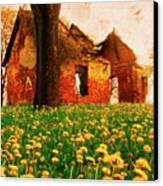Abandoned Beauty Canvas Print by Emily Allred
