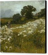 Across The Fields Canvas Print by John Mallord Bromley