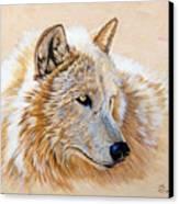 Adobe White Canvas Print by Sandi Baker