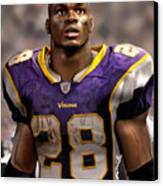 Adrian Peterson Standing Canvas Print by Douglas Petty