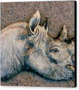 African Black Rhino Canvas Print by Dy Witt