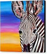 African Zebra Aura Canvas Print by Donna Proctor