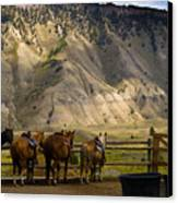 After The Ride Canvas Print by Patrick  Flynn