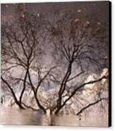Afternoon Reflection Canvas Print by Derek Selander